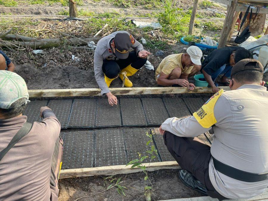 Polsek TPTM  Melihat Penyemaian Bibit  Semangka dan Pemasangan Mulsa di Ketahanan Pangan Kampung Tangguh Nusantara